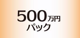 500万円パック